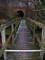 Bridges for Foot and Rail, Hornshurst Wood - geograph.org.uk - 647955.jpg