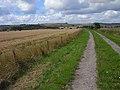 Bridleway, North Newnton - geograph.org.uk - 1560467.jpg