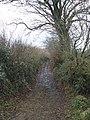 Bridleway, to Greenslinch - geograph.org.uk - 1124976.jpg