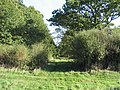 Bridleway entrance to Holey Brookes wood - geograph.org.uk - 269173.jpg