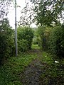 Bridleway from Hollins Hill to Cunliffe Lane - geograph.org.uk - 996946.jpg