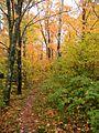 Britton Peak (4976750947).jpg