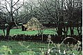 Bronze Age Roundhouse - geograph.org.uk - 1083197.jpg