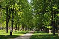 Budysche park.JPG