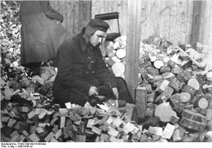 Brookwood Labor College - Wood chopping was one of the manual chores all faculty and students at Brookwood were expected to assist with.