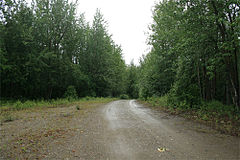 Bypassed segment of Alaska Highway, near Craig Lake, Alaska.jpg