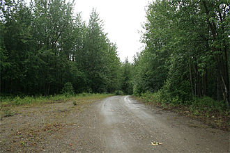 National Register of Historic Places listings in Southeast Fairbanks Census Area, Alaska - Image: Bypassed segment of Alaska Highway, near Craig Lake, Alaska