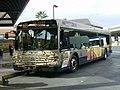 CAT Coach 915.JPG