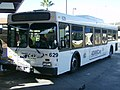 CAT New Flyer D40LF 610-631.JPG