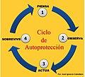 CICLO DE AUTOPROTECCIÓN.jpg