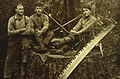 CSIRO ScienceImage 1568 Historical Photo of Loggers.jpg