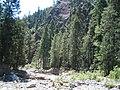 Cañadas del Parque Nacional La Malinche, Tlaxcala (25015391652).jpg