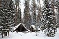 Cabin in Winter Wonderland (Unsplash).jpg