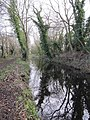 Canal along the towpath - geograph.org.uk - 1639188.jpg