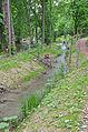 Canal du Boiron Tolochenaz (2).JPG