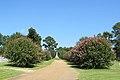 Canton Cemetery (6036395549).jpg