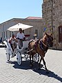 Carriage in Chania, Creta (02).jpg