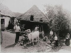 Casa rural na Ponta do Pargo, 1872-1880.jpg