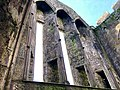 Cashel Cathedral, Rock of Cashel, Caiseal, Éire (46591712291).jpg