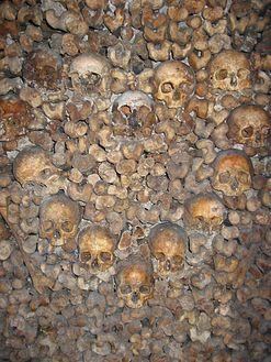 Dans les catacombes de paris - 2 8