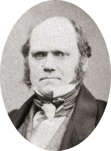 Foto in studio che mostra la caratteristica fronte ampia e le sopracciglia folte di Darwin con occhi infossati, naso da carlino e bocca con uno sguardo determinato.  È calvo sopra, con capelli scuri e lunghi baffi laterali ma senza barba o baffi.