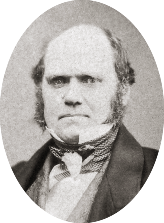 "Charles Darwin, aged 46 in 1855, by then working towards publication of his theory of natural selection. He wrote to Hooker about this portrait, ""if I really have as bad an expression, as my photograph gives me, how I can have one single friend is surprising."" Charles Darwin by Maull and Polyblank, 1855-crop.png"