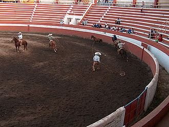 Sport in Mexico - Charreada in progress with charro attempting to catch a loose horse