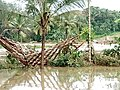 Cheruvannur vettikatiri kakkathod flood 3.jpg