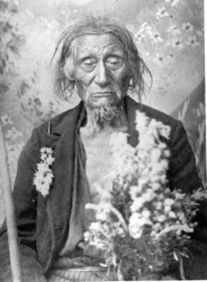 Eden Prairie, Minnesota - Portrait of Native American Chief Shoto taken in Shakopee, Minnesota