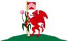 Flag of Cardiff