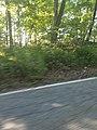 Clinton Road, NJ 20160617 190441.jpg
