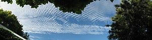 Altostratus undulatus cloud - Undulated cloud in Christchurch, New Zealand.
