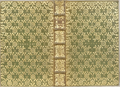 Cobden-Sanderson Binding 1886 The Princess for Mitford.png