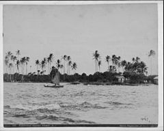 Coconut Island, Hawaii, photograph by Frank Davey (PP-28-12-014).jpg