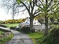 Codau Mawr - geograph.org.uk - 165449.jpg