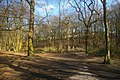 Coldfall Wood, Muswell Hill, London N10 - geograph.org.uk - 1742828.jpg