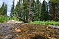 Colorado River (7825758928).jpg