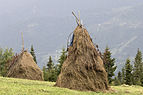 Conical Haystacks 02.jpg
