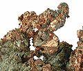 Copper-136081.jpg