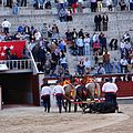 Corrida madrid eq 2014-04-13 07.jpg