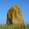 Corsept - Menhir Pierre-Bonde (1).jpg