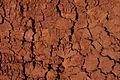 Cracked earth - Flickr - Al Jazeera English.jpg