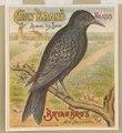Crow brand molasses. Bryan Bro's New Orleans LCCN2003667053.tif