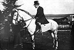D'Annunzio on Horseback.jpg