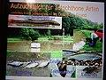DSC02334 Erklärung zum Teich zur Aufzucht autochthoner Fischarten.jpg