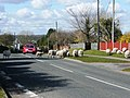 Danger, sheep - geograph.org.uk - 743652.jpg
