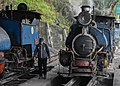 Darjeeling Himalayan Railway,toy train (11).jpg