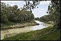 Darling River at Wilcannia-2 (20772680233).jpg