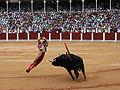 David Fandila El Fandi.jpg