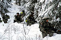 Defense.gov News Photo 110126-A-0000E-003 - U.S. Army soldiers conduct squad training after unloading from a UH-60 Black Hawk helicopter at Joint Base Elmendorf-Richardson Alaska on Jan.jpg